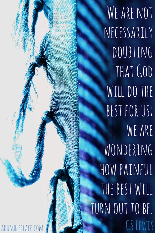 We are not necessarily doubting that God will do the best for us; we are wondering how painful the best will turn out to be. CS Lewis - ahumbleplace.com