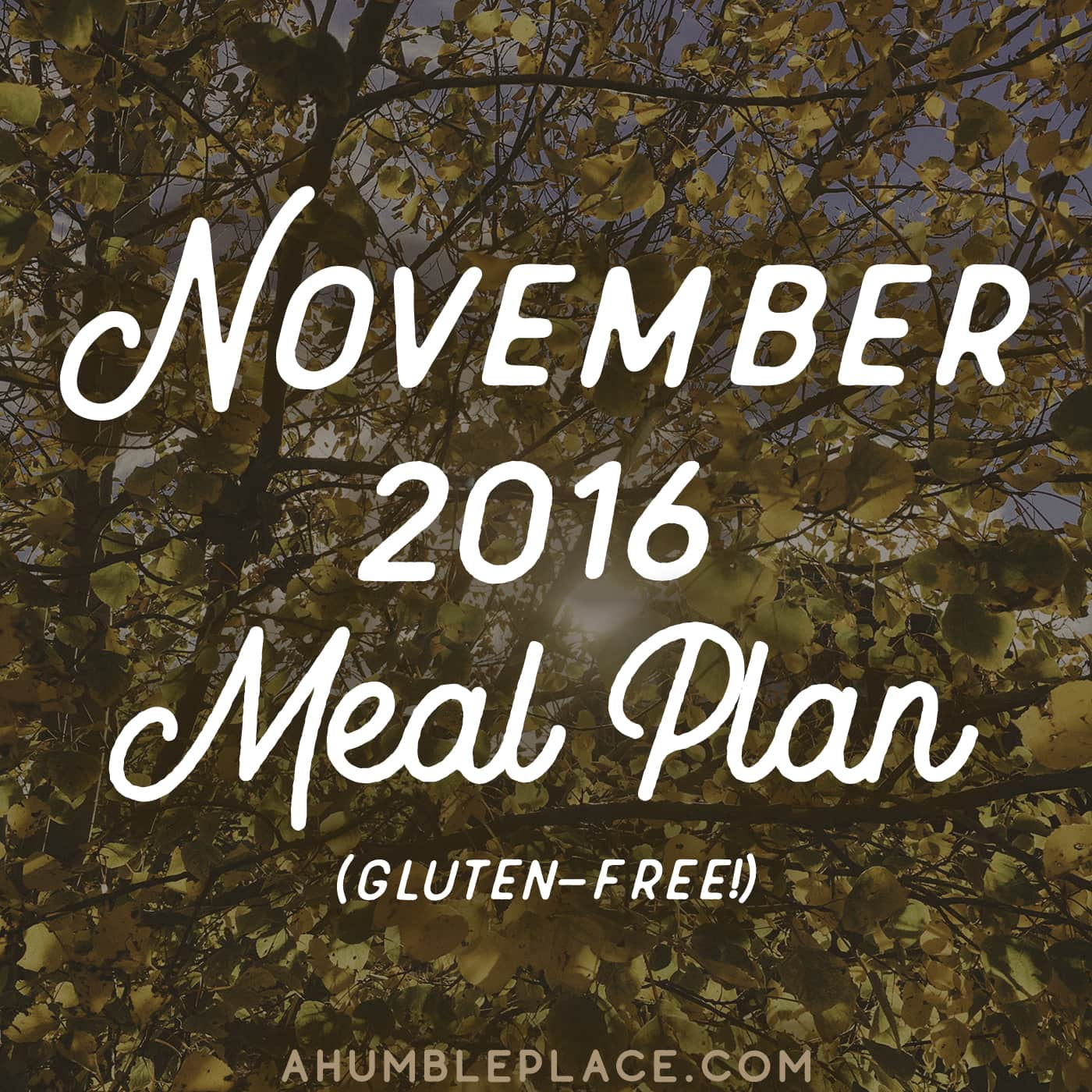 The November 2016 Monthly Meal Plan is here! This meal plan includes 5 to 6 gluten-free, grain-free, mostly dairy-free (or adaptable to dairy-free) meals for five weeks! It also includes Thanksgiving! - ahumbleplace.com