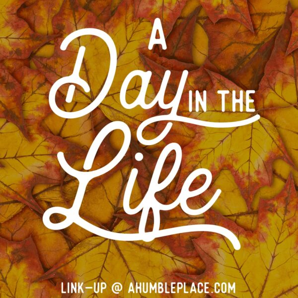 A Day in the Life - ahumbleplace.com