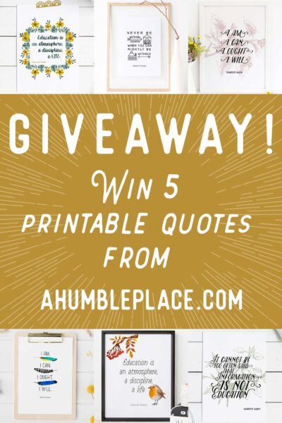 Giveaway at ahumbleplace.com!