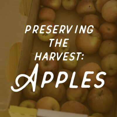 Preserving Apples - ahumbleplace.com