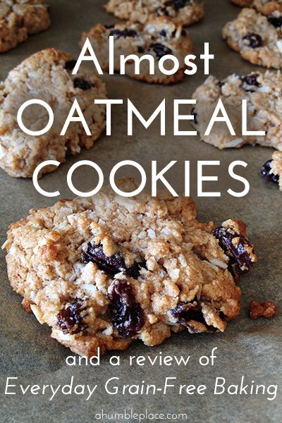 Almost Oatmeal Cookes (GF, DF) - ahumbleplace.com