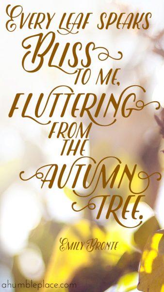 Free autumn desktop wallpaper!