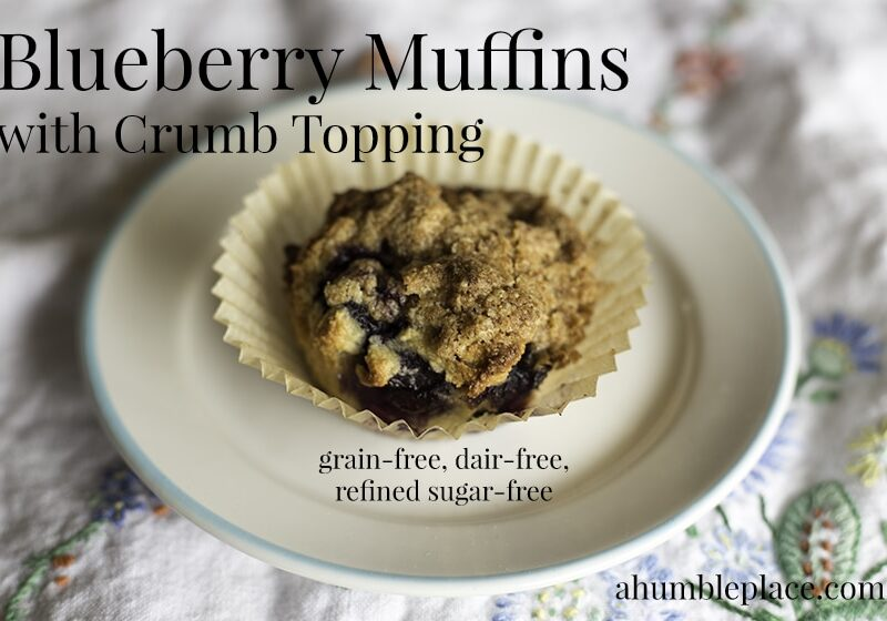 Looking for a grain-free, dairy-free, refined sugar-free blueberry muffin recipe? This one will definitely satisfy!