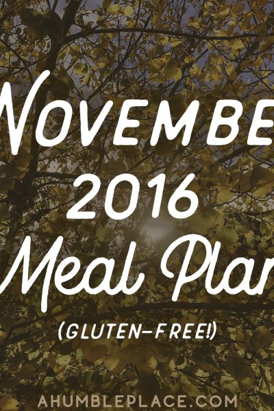 The November 2016 Meal Plan is here! This meal plan includes 5 to 6 gluten-free, grain-free, mostly dairy-free (or adaptable to dairy-free) meals for five weeks! It also includes Thanksgiving! - ahumbleplace.com