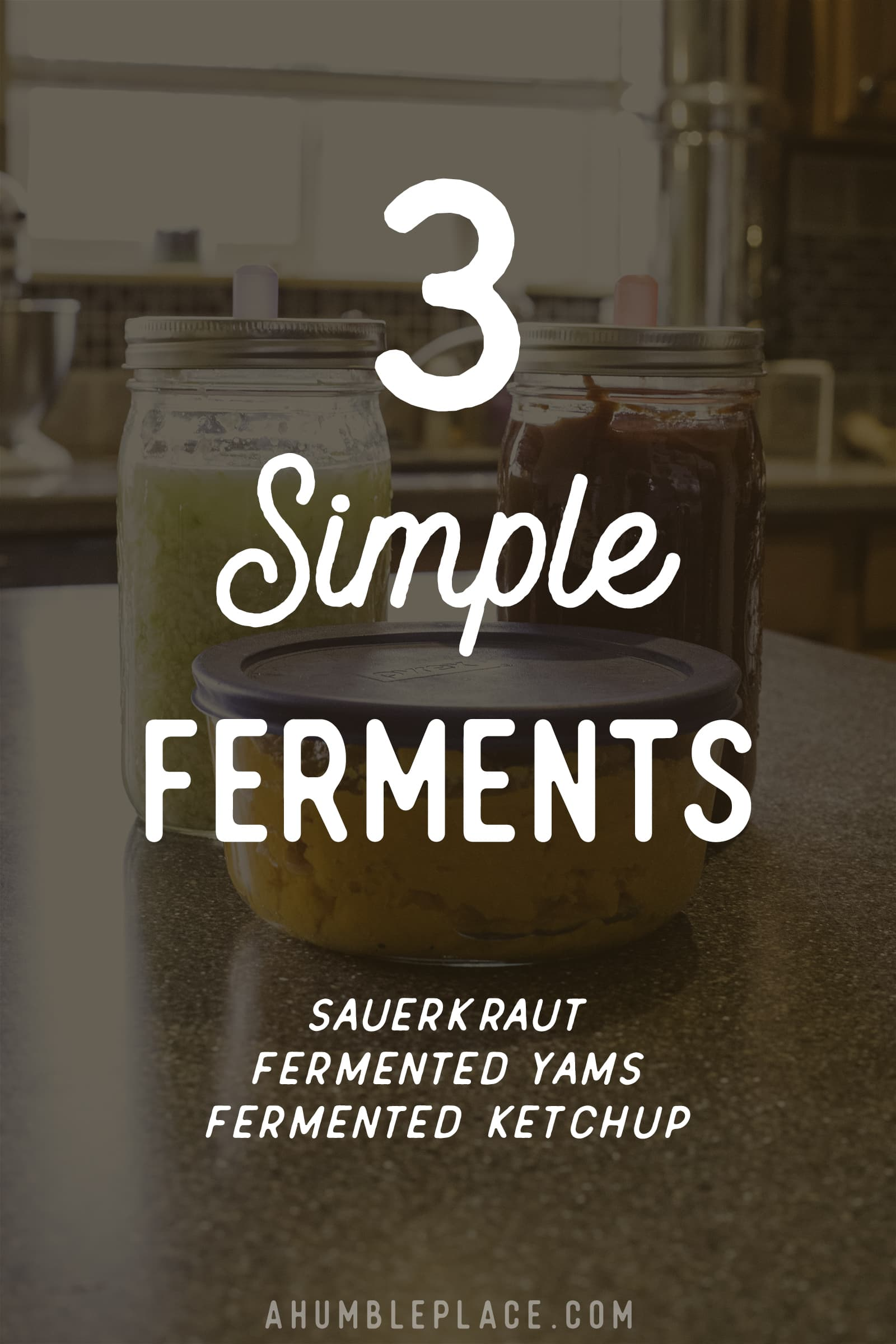 3 Simple Ferments - ahumbleplace.com