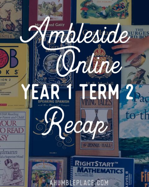 A recap of our Ambleside Online Year 1 Term 2 with a few previews of what we'll be doing in Term 3! - ahumbleplace.com