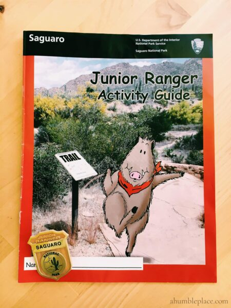 Saguaro Junior Ranger Badge - ahumbleplace.com