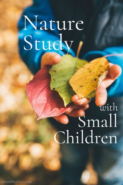 Nature Study with Small Children - ahumbleplace.com #charlottemason #naturestudy #homeschool